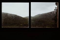 Blick aus Fenster, Regentropfen an Fenster, Autumn feeling, Fensterscheibe, Herbststimmung