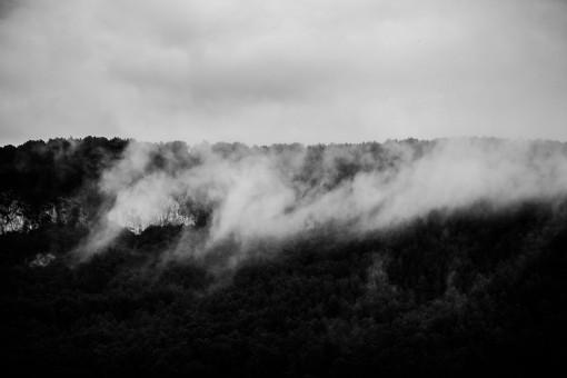 Eine Wolke zieht vor einer Waldlandschaft vorbei